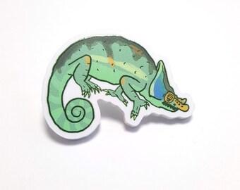 Chameleon Acrylic Pin / Brooch