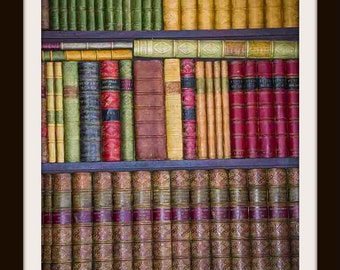 Office Wall Art, Colorful Books, Book Photography, Office Decor, Library Print, Colorful Wall Art, Red, Yellow, Green