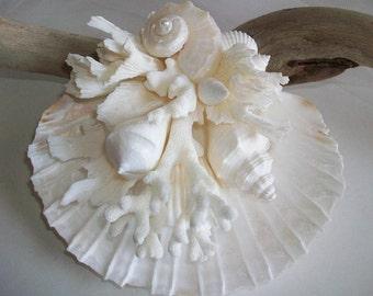 Beach Theme Wedding Shell & Coral Ring Bearer, Shell Wedding Ring Display, Wedding Bridal Decoration Display, Shell Coral Home Decor
