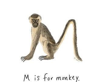 M is for Monkey Print