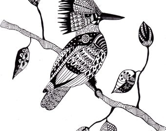 Fine Art Print Pen and Ink Kingfisher