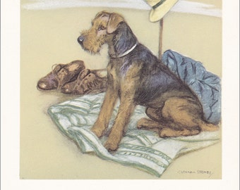 Airdale Terrier vintage dog print gift decor illustration British working dog breed by V. Stokes 7 x 9.5 inches
