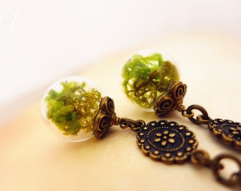 Moss Earrings, Nature Earrings, Terrarium Earrings, Moss Terrarium Jewelry, Enchanted Forest Earrings,  Boho Earrings, Ecofriendly Jewelry