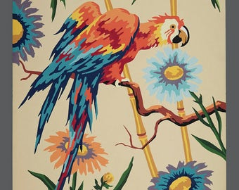 Vintage Colorful Parrot Acrylic Painting Paint By Number Art
