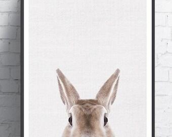 Rabbit Print, Nursery decor, Woodland Nursery Decor, Bunny Wall Art Print, Large Printable Poster,Rabbit Wall Art Print, Nursery Prints