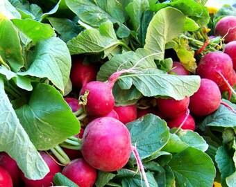 Radish 'Cherry Belle' Seeds, Radish Seeds, Garden Seeds, Non-GMO Garden Seeds