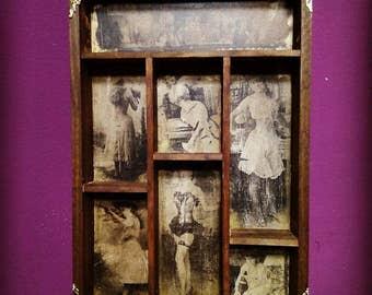 Wild Women  Cabinet of curiosities