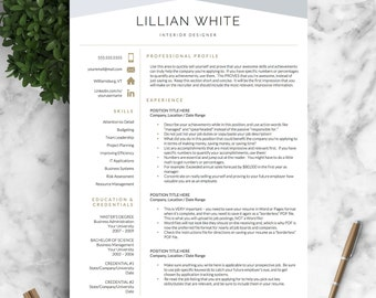 Modern Resume Template Professional Resume Template for Word
