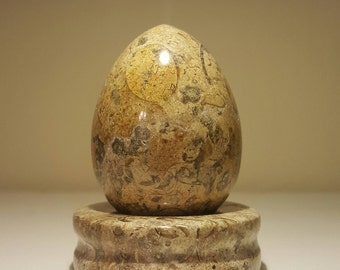 Stone Egg, Fossilized Coral with Matching Pedestal Stand
