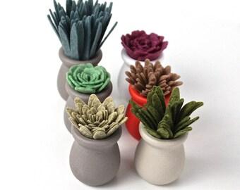 Mini-Felt Succulent Planters