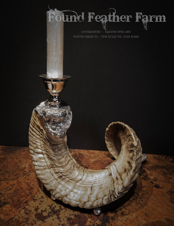 Handmade Ram's Horn Soldered Candlestick with Silver Plated Candleholder and Silver Feet