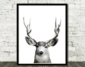 Buck Print, Wildlife Art Print, Deer Print, Deer Printable, Woodland Print, Watercolor Deer, Printable Art, Nature Printables