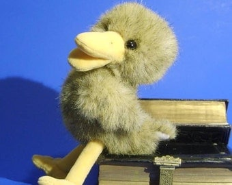 Bird Rudi