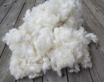 Natural  Ivory White Romney Wool Locks hand washed 2 oz