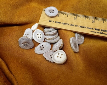 antler buttons,white tail deer antler, buttons