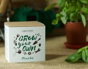 JETZT AUF VERKAUF! -Wachsen Sie Ihre eigenen Basilikum-Pflanze-Kit