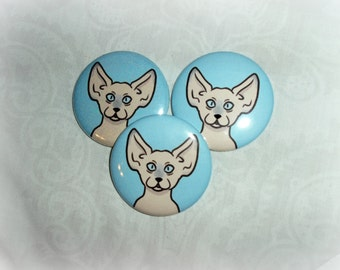 3 Buttons/Pins set 2 1/4 inches : beige sphinx hairless cat