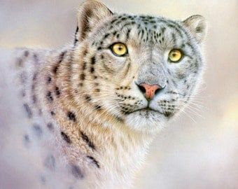 Snow leopard Original pastel drawing