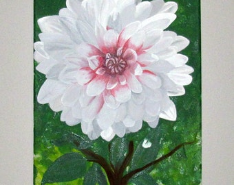 White and Pink Dahlia Flower