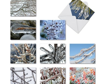 M2279 Nature On Ice: 10 Assorted Christmas Note Cards Featuring Close-Up Photos Of Icy Tree Limbs, w/White Envelopes