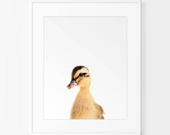 Duckling Print, Yellow and Grey Nursery decor, Duckling Nursery  Print, Duckling Wall Art, Nursery Animal Wall Art, Nursery Printable Art,