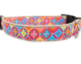 Dog collar / leash SUMMER LOVE