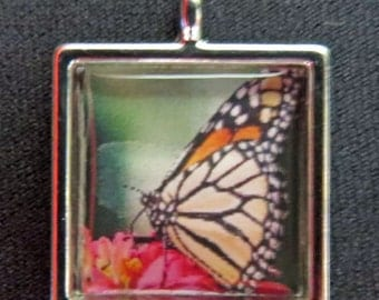 Monarch Butterfly photo pendant