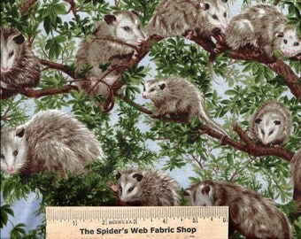 Fabri-Quilt Fabric - Forest Critters - OPOSSUM - POSSUM  - Backyard Bandits - 100% Cotton - Quilt Shop Quality Fabric - By the Yard