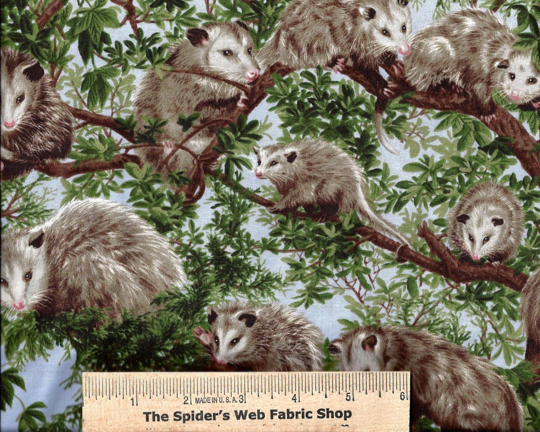 fabri quilt fabric forest critters opossum possum backyard