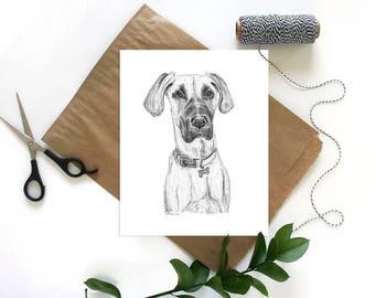 Great Dane, Dog Lover Gift, Great Dane Art, Dog Artwork, Great Dane Gifts, Great Dane Print, Dog Art Print, Great Dane Dog, Great Dane Decor