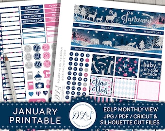 January Monthly Kit, January Planner Stickers, Printable Planner Stickers made for Erin Condren LifePlanner, New Year Planner, MV117
