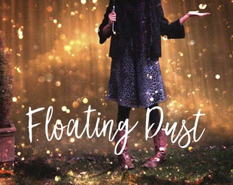 Floating Dust Overlays, Photoshop Overlays, Mini Sessions, Fairy Dust Overlays, Photo Effect, Digital Backdrop, Instant Download