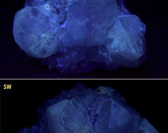 fluorescent FLUORAPOPHYLLITE crystals with QUARTZ - Prospect Park, New Jersey
