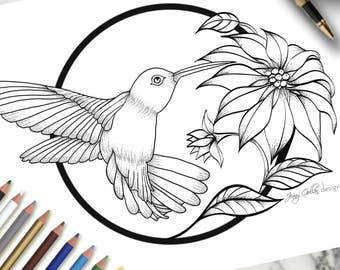 Adult Colouring Page HummingBird
