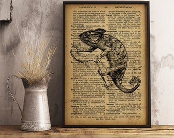 Chameleon Print, Chameleon Dictionary Art Print, Vintage Reptile illustration wall art home decor, Reptile Print, Animal Print (A10)