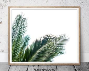 palm leaf print, tree print, leaf print, fern print, botanical print, palm print, palm tree, tropical poster, botanical art, tropical leaf