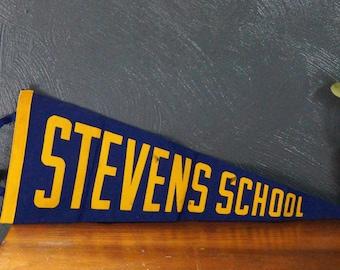 steven's school vintage pennant - blue and yellow pennant - birthday gift - vintage gift - teacher gift - vintage school pennant - steven