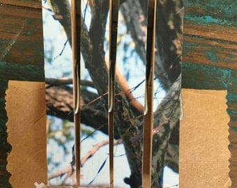 Tree Branches on Peg Fridge Magnets (one-of-a-kind)