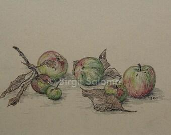 Apple, fruit, fruit, still life, fine art print 20 x 30 cm, 30 x 40 cm posters, FineArt print 29, 7 x 42 cm, original pastel 30 x 40 cm