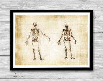 Skeletons print, Human Skeletons Art Poster, Medical Wall Art, Anatomy poster, Human Anatomy Print, Medical decor, Cotton Canvas Print