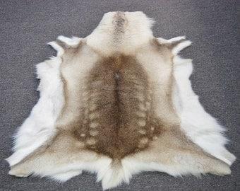 Medium Reindeer Hides for Home Decor