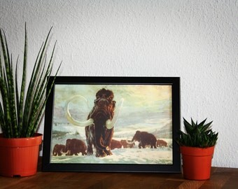 1960's Vintage Book Plate Prehistoric Times W13/H9,5 inch (framed)
