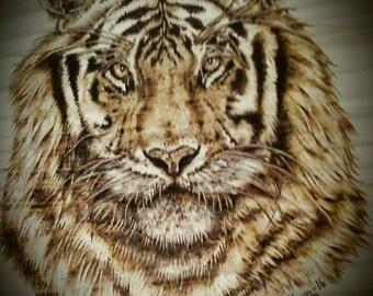 Tiger Portrait Pyrography Wood burning
