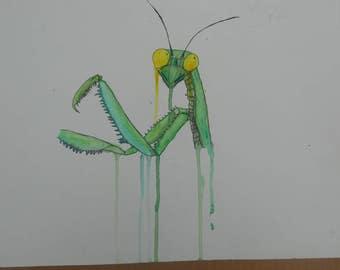 Praying Mantis Watercolor Painting