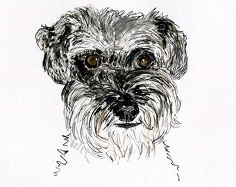 Susie-Belle Greeting Card 50% Profits donated to Diana Brimblecombe Animal Rescue Centre