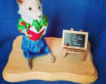Taxidermy rat/teacher/anthropomorphic