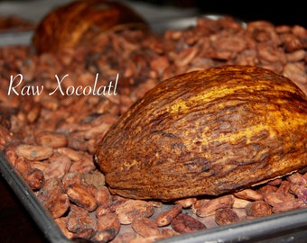 5 Lbs Whole Raw Cacao Beans