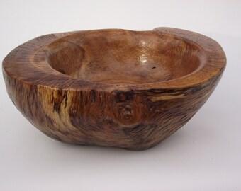 Historic White Oak Burl bowl  # 101