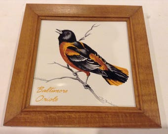 Vintage Screencraft Hand Painted Baltimore Oriole Framed Ceramic Tile Wall Hanger by R. Brooks
