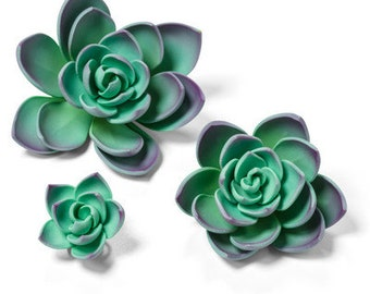 3 CT Succulent Cake Toppers/ Teal Green Succulent Cake Topper/ Edible Succulents/ Succulent Cake Topper